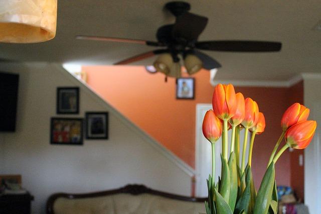 Deko Orange