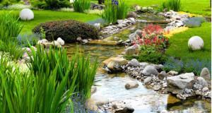 Teich Bilder Und Impressionen U2013 Gartengestaltung Mit Teich