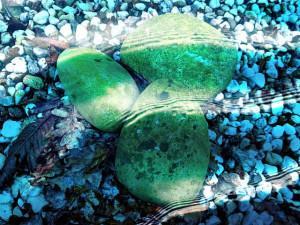 Schwimmteich Steine