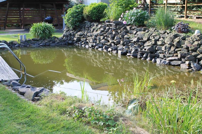 Schwimmteich Fur Den Garten Naturnah Und Erfrischend